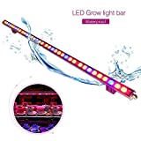 Led Grow Light,108W Waterproof IP65 plant grow light bar with Red & Blue Spectrum for Garden Greenhouse Hydroponic Indoor Plants Veg Growing Flowers by Lightimetunnel