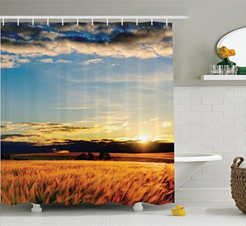 ambesonne-farm-house-decor-collection-gold-barley-in-sunset-sunlights-on-flora-shadows-of-clouds-rur