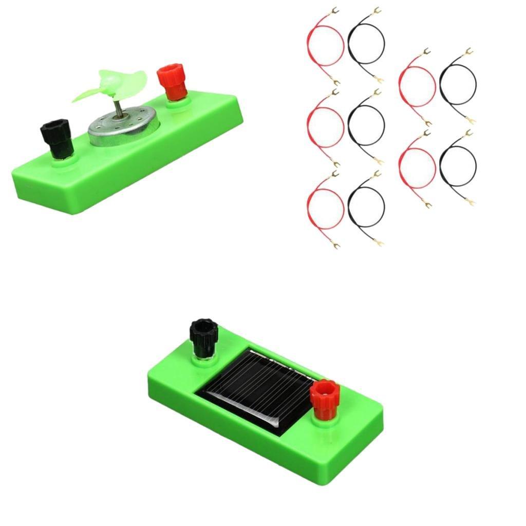 #1 Multi Homyl Mat/ériel Dexp/érience de Circuit /Électrique Jouets /Éducatifs De Science