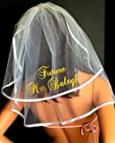 Bachelorette Veil - Personalized in Sparkling GLITTER lettering which comes in an array of colors. Bridal Shower, Hen Party,