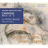 Cantatas for the Complete Liturgical Year Vol.11