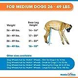 Walkin' Wheels Dog Wheelchair - for Medium Dogs