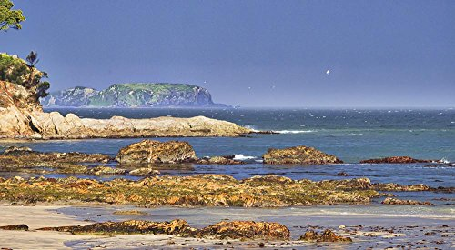 (Denhams Beach, Batemans Bay, NSW, Australia Photograph.)