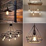 Ascher Vintage LED Edison Bulbs, 6W, Equivalent