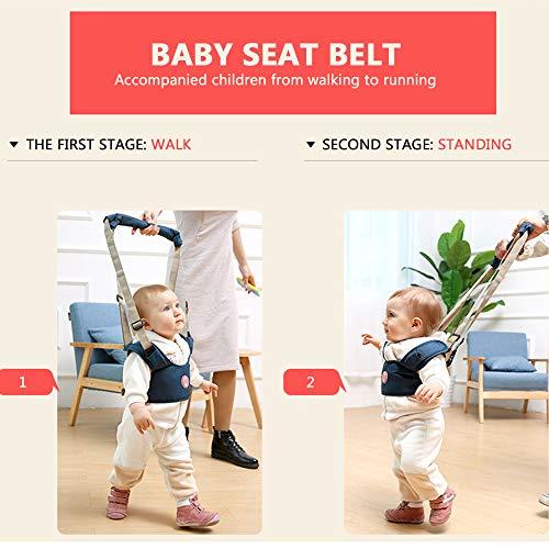 Caminar bebé Asistente de Doble Modo de Aprendizaje Ajustable Walk ...