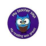 250 Children's School Student Encouragement ''My Reading Was Great!'' Motivational Kid's Stickers