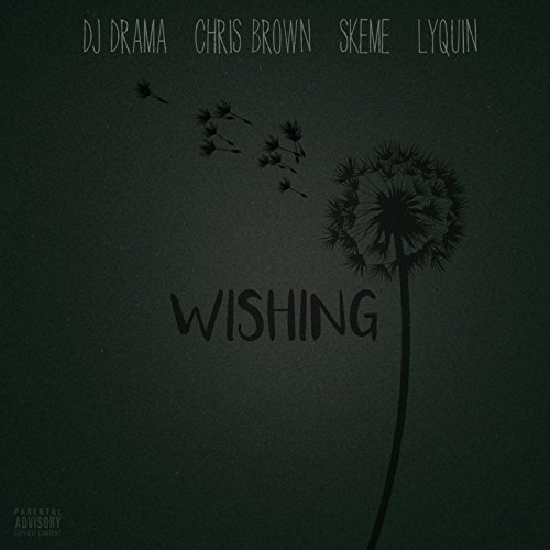 Wishing (feat. Chris Brown, Sk...