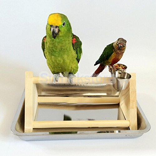Wooden PLAY STAND Perch gym parrot bird cages toy Conure ...