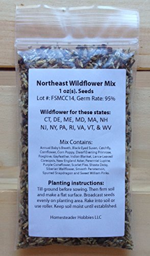 New Hampshire Wildflower Seed Mix, 1 (Northeast Hobby)