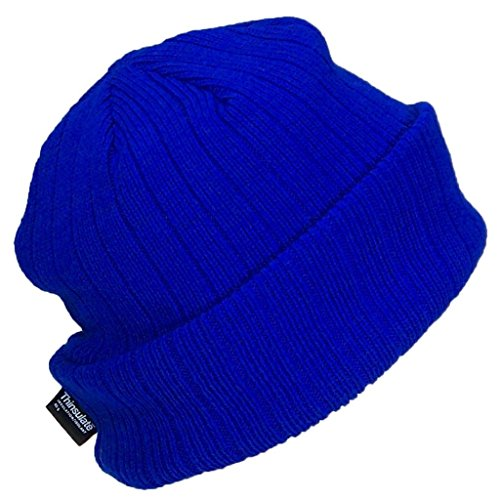 (Best Winter Hats 3M 40 Gram Thinsulate Insulated Cuffed Knit Beanie (One Size) - Royal Blue)