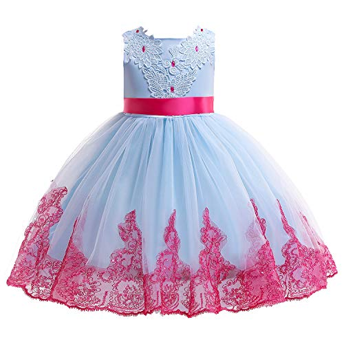 Kids Easter Christmas Birthday Pageant Party Wedding Formal Dresses for Toddler Girls Size 8 9 Years Tulle Ball Gown Daddy Daughter Dance Flower Girl Dress (Light Blue, 110) -