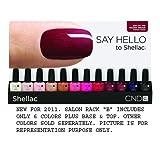 "CND Shellac UV Salon Rack SET ""B"" New for 2011"