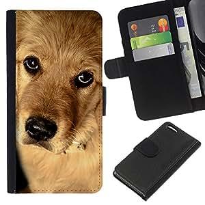 BearCase / Cuero de la tarjeta la carpeta del tirón Smartphone Slots Protección Holder /// Apple Iphone 5C /// Perro del golden retriever Cachorro Canino