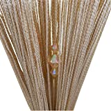 Tangpan 100cmx200cm Decorative String Sparkling Diamond Beadeds Door Curtain Room Divider Window Fly Screen Color Champagne