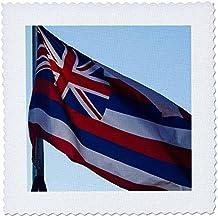 3dRose Danita Delimont - Oregon - Oregon, Salem, State Capitol State Park, the Hawaiian state flag. - 10x10 inch quilt square (qs_251357_1)