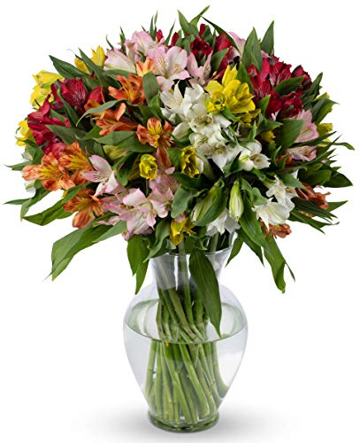 - Benchmark Bouquets Assorted Peruvian Lilies, With Vase (Fresh Cut Flowers)