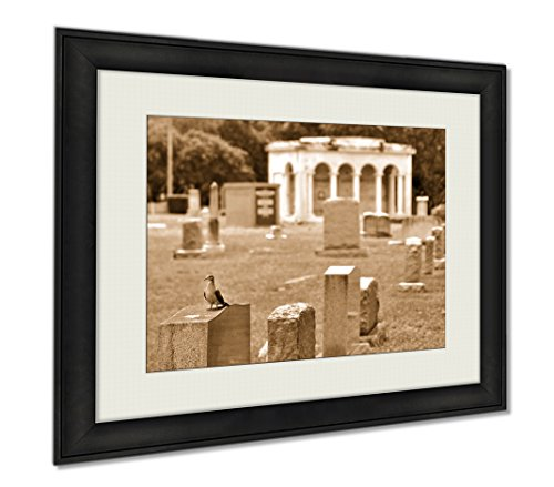 Ashley Framed Prints Pigeon Standing On A Crypt At A Cemetery, Wall Art Home Decoration, Sepia, 26x30 (frame size), AG6547960 by Ashley Framed Prints