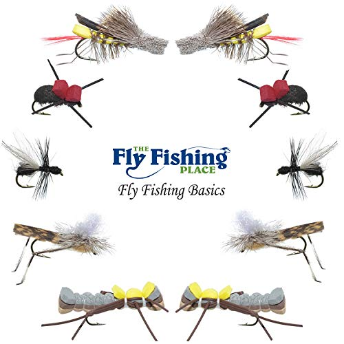 The Fly Fishing Place Basics Collection - Terrestrials Dry Fly Assortment - 10 Dry Fishing Flies - Hopper, Ant and Beetle Fishing Fly Patterns - Hook Sizes 10, 12 and 14 - Hopper Dry Fly
