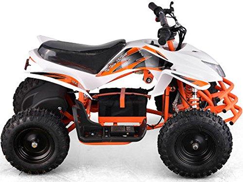 Titan Outdoor Kids Children 24V White Mini Quad ATV Dirt ...