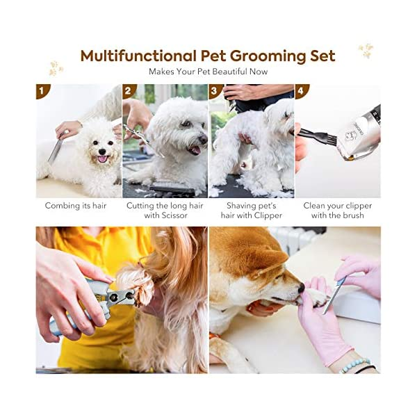 OMORC Dog Clippers, Low Noise Dog Grooming Kit Rechargeable Cordless Dog Shaver Pet Clippers Professional Dog Hair Trimmer with 4 Comb Guides Scissors Nail Kits for Dogs Cats and Other Animals 6