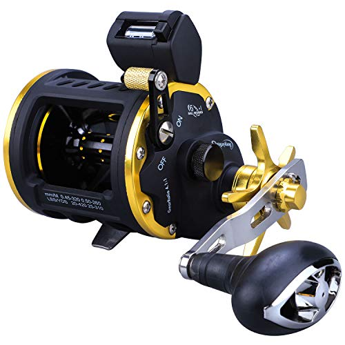 Sougayilang Line Counter Fishing Reel Conventional Level Wind Trolling Reel-TRA 30R (Facts About Oz The Great And Powerful)