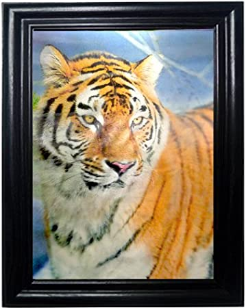LEOPARD WOLF TIGER FRAMED Holographic Wall Art POSTERS That FLIP And CHANGE  Images Lenticular