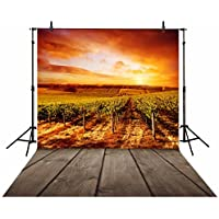 Allenjoy 5x7ft Polyester Photography backdrops Autumn Sunset vineyard wood background for photo studio