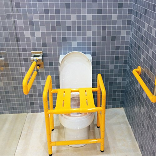 ZXLDP Grab Rails Dual Chair Shower Stool Stainless Steel Toilet Chair Nylon  Elderly Disabled People Bathing Chair Bathroom Accessories ( Color :