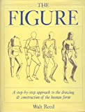 The Figure: An Approach to Drawing and Construction