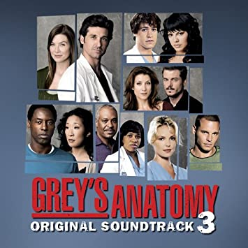 greys anatomy season 5 episode 17 music