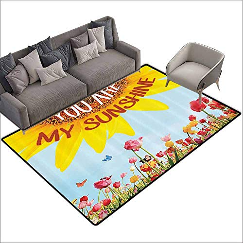 Designed Kitchen Bathroom Floor Mat Colorful Western Farmhouse Mansion Nature Decor Collection,Sunflower Poppies Tulips Pansy Flowers Butterfly You are My Sunshine 36