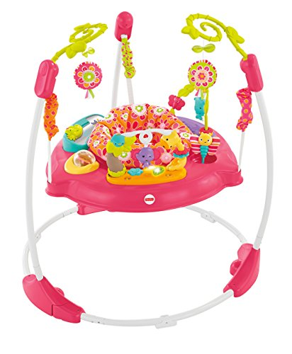 Fisher-Price Jumperoo: Pink Petals (Fisher Price Monkey Jumper)