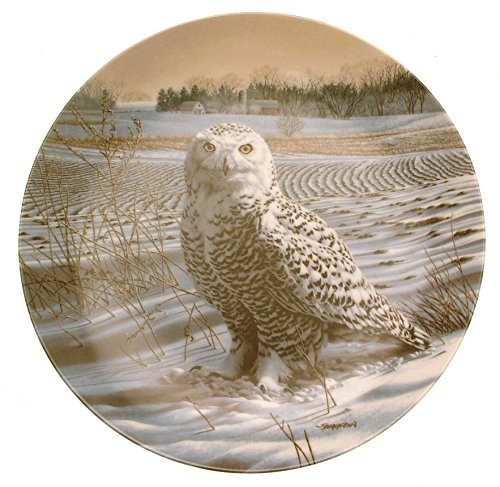 Bradford Exchange Collector Plate The Stately Owls The Snowy Owl Jim Beaudoin HJ106