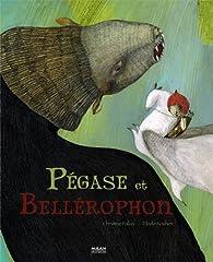Pégase et Bellérophon par Christine Palluy