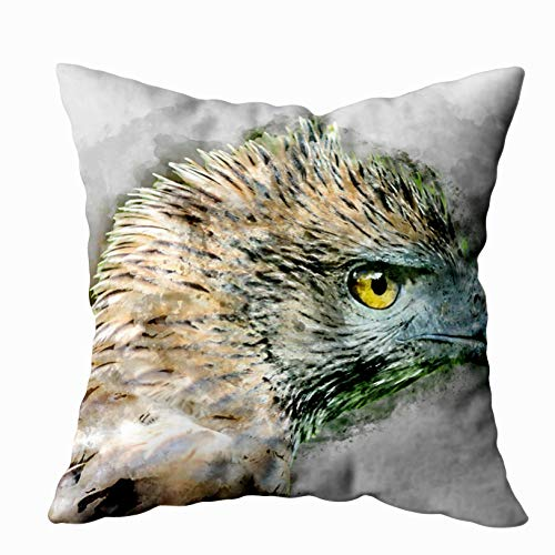 Sertiony Bed Pillow Covers, Farmhouse Decorative Covers Square 18X18 inch Watercolor Image Close Up Changeable Scientific Name HawkEagle Spizaetus limnaeetus Soft for Bed,Sofa,Couch