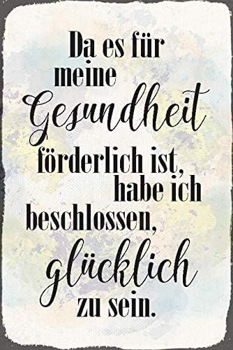 Blechschild 20x30cm Gesundheit Glucklich Humor Spruch Spruche