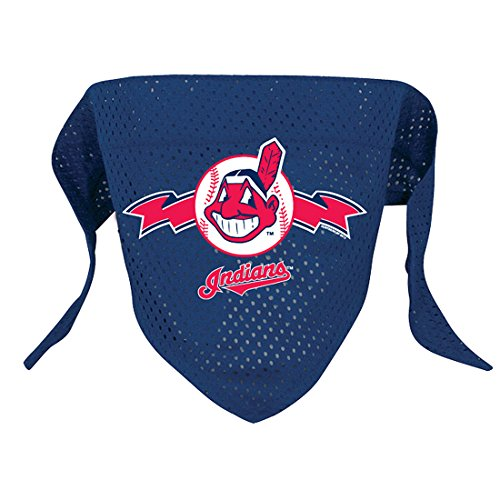 Hunter MFG Cleveland Indians Mesh Dog Bandana, Large