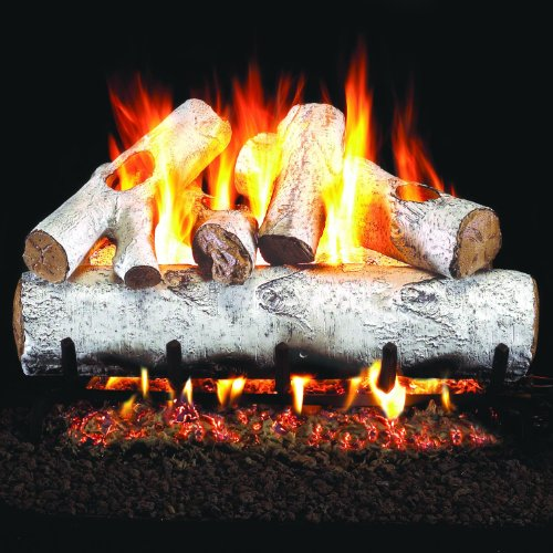 Peterson Real Fyre 24-inch White Birch Log Set With Vented Natural Gas G4 Burner - Match Light ()