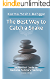 The Best Way to Catch a Snake: A Practical Guide To Gautama Buddha's Teachings