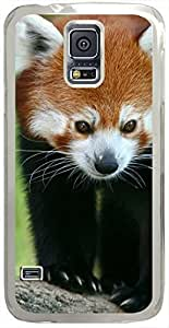 Animals & Birds Red-Panda Cases for Samsung Galaxy S5 I9600 with Transparent Skin