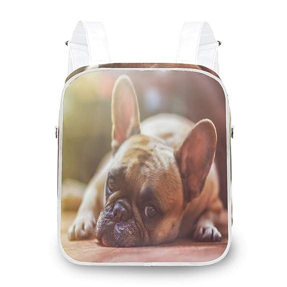 Amazon.com: Women Shoulder Bag Rucksack Sharpei Cute Dog ...