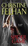 Spider Game (Ghostwalker Novel Book 12)