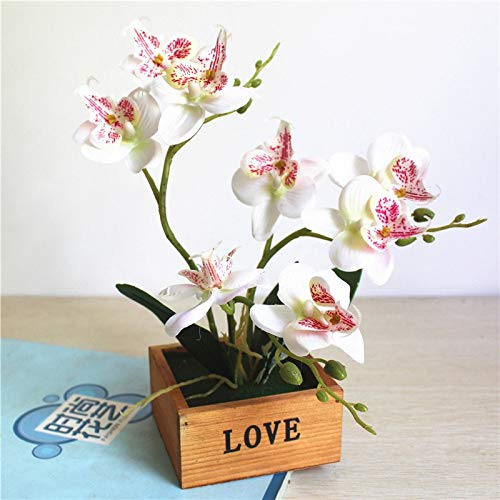 (Bonsai Plastic - 1x Butterfly Orchid Potted Plant Set Artificial Flower Bonsai Plastic Floral Branch Wooden Flowerpot - Plastic Orchid Pots Tray Bonsai Wood Butterfly Tree Branch)