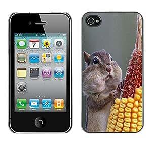 Be Good Phone Accessory // Dura Cáscara cubierta Protectora Caso Carcasa Funda de Protección para Apple Iphone 4 / 4S // Funny Hungry Squirrel