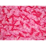 Ocharzy 1000pcs Silk Rose Petals Wedding Flower Decoration (Pink+Red Edge)