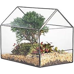 NCYP House Shape Glass Geometric Terrariumn Side Open Succulent Cacti Fern Moss Miniature