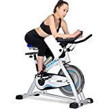 Doitpower Spinning Bike with Flywheel for Indoor Exercise Home Cycling Fitness Equipment (white and blue) Review