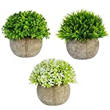 Bantoye 3 Packs Artificial Plastic Mini Plants, Faxu Topiary Plants with Pots for Home Office Weddings Decoration