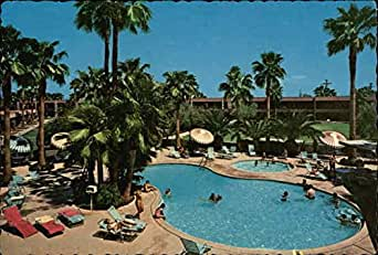 safari hotel scottsdale arizona original vintage postcard at amazon 39 s entertainment. Black Bedroom Furniture Sets. Home Design Ideas