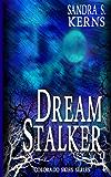 Dream Stalker (Colorado Skies Book 1)